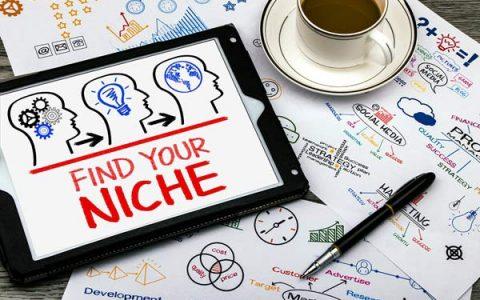 如何选择利基/Niche?私家案例分享