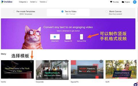 在线视频制作工具 -  InVideo,3千模板,100万视频库,文字自动转视频(支持中文)